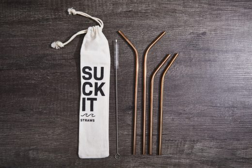 Stainless Steel Straw Set 2