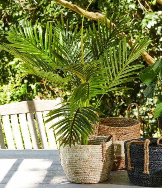 Faux Palm Tree 1